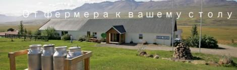 Ягнятина Iceland lamb от небольших фермерских хозяйств Исландии