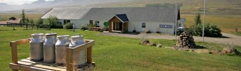 Исландская кухня знаменита тем, что в состав блюд входят только экологически чистые продукты