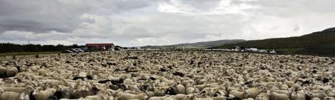 Красивой Исландию сделала природа, а сказочной – местные жители